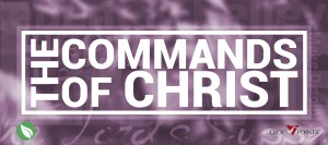 Commands of Christ Banner