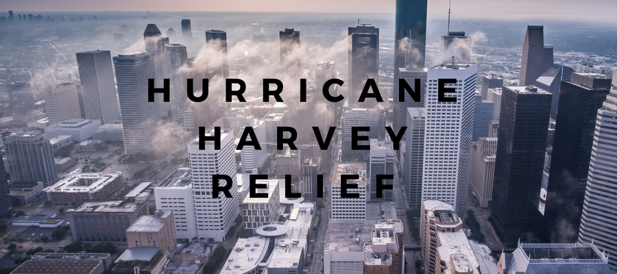 Relief HArvey website